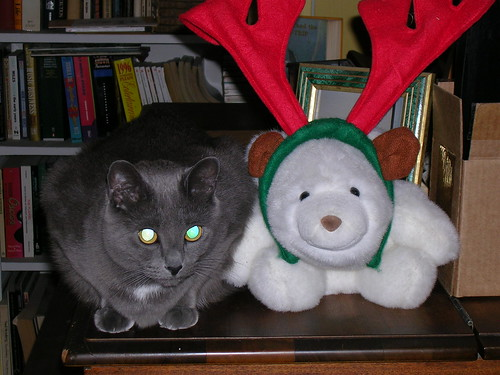 Nica and Snuffles at Christmastime 2005