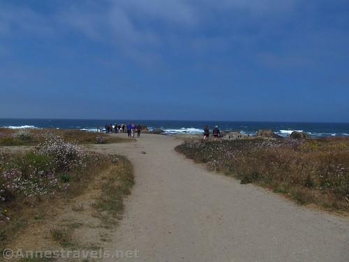 The meeting of the two trails to Glass Beach, California
