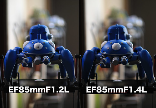 EF85mm F1.4L IS USM SAMPLE_01