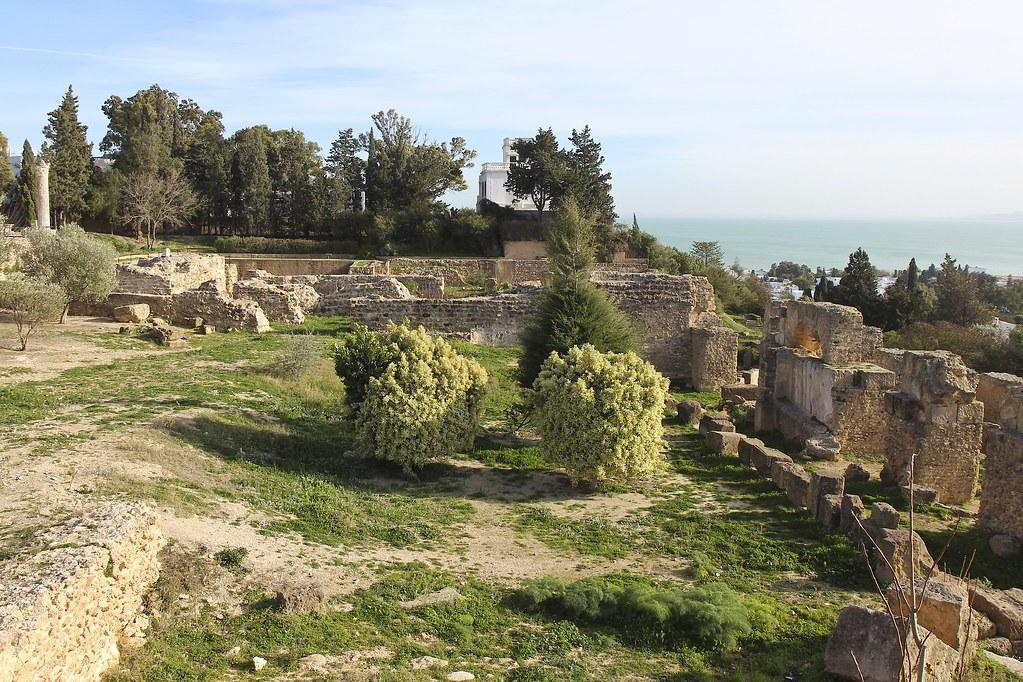 """""""Delenda est Carthago! - Muuten olen sitä mieltä, että Karthago on tuhottava"""""""