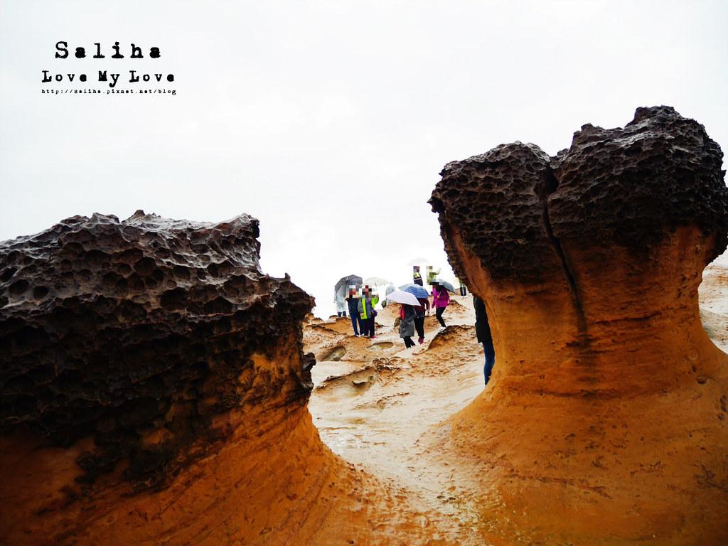 新北金山萬里一日遊景點推薦野柳地質公園 (15)