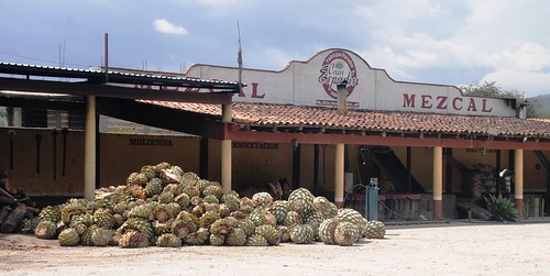 127 Mitla Mezcal (2)