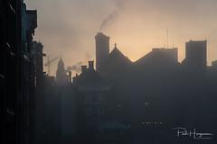 Fog @ Damrak (Amsterdam)