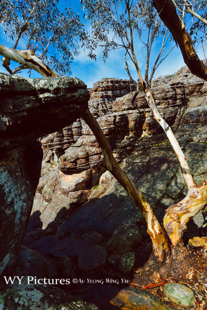 Victoria 2017: Grampians Grand Canyon Hiking Path