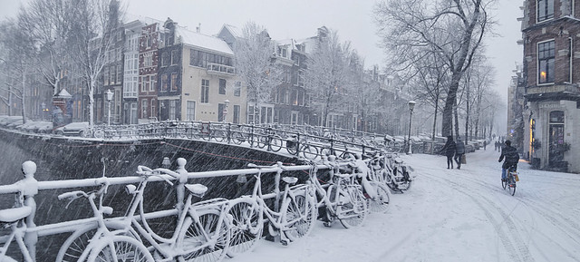 Snow in Amsterdam does not keep the Dutch from riding their bicycles