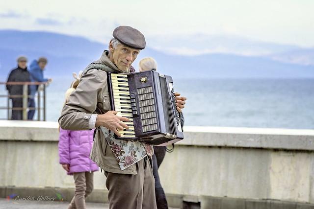 Street musician (accordionist)