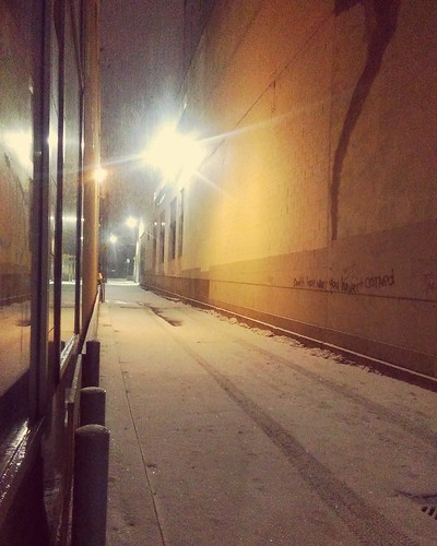 North as the snow falls #toronto #yongeandwellesley #night #chechalklane #snow #alley #laneway