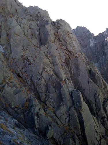 登りは平気なんだけど、下りが怖い
