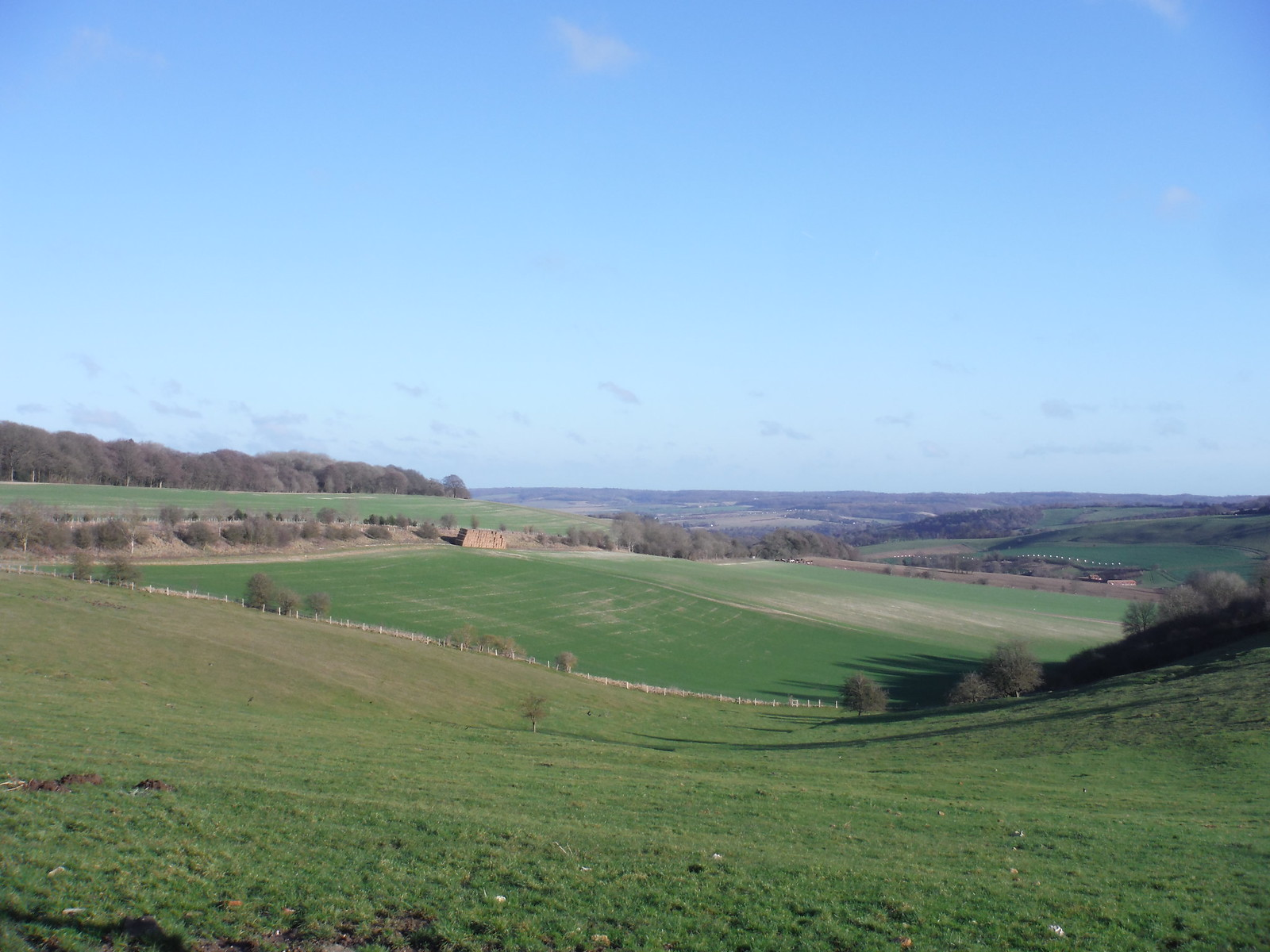 Far Views from Streatley Warren upper rim SWC Book 1 Walk 17 Goring Circular [Streatley Warren Extension]