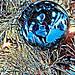 Crystal Ball by byzantiumbooks