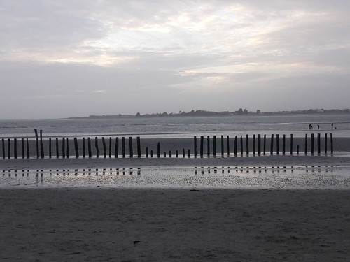 Staves on West Wittering Beach