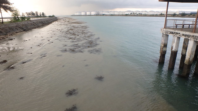 Brown runoff water in the sea after heavy rain