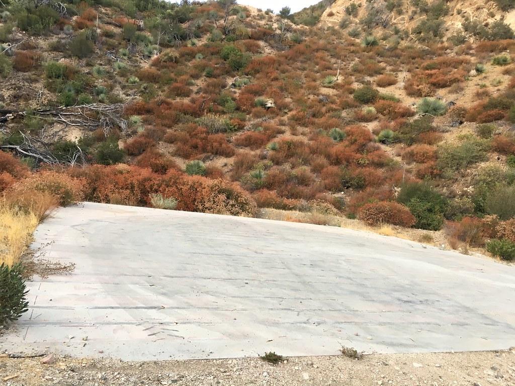 Ladybug Canyon