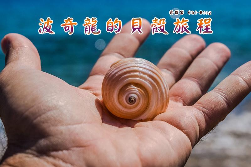 波奇龍的貝殼旅程