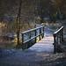 Cold Little Bridge [5D4_7636] by GammyKnee