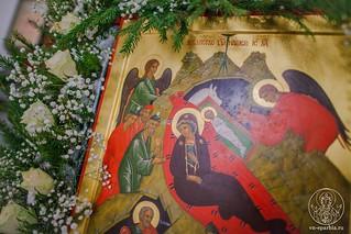 Рождество Христово 225