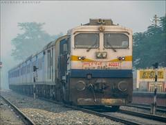 TKD WDP-4D #40257 with 12039/KGM NDLS Shatabdi Express !!