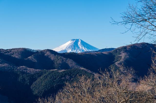 富士山お出まし
