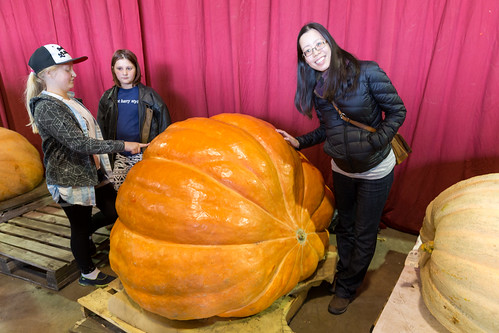 Great White North Pumpkin Fair