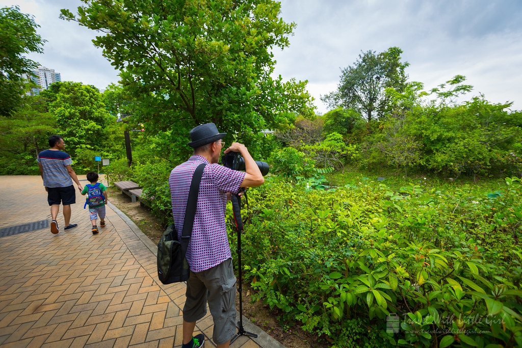 Spotted another photographer in Hong Kong Wetland Park