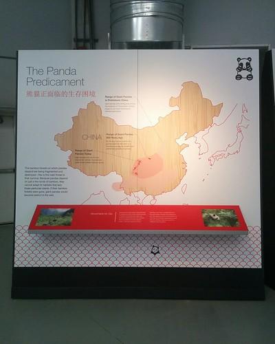 """The Panda Predicament"" #toronto #torontozoo #pandas #giantpandaexperience #china #maps #extinction #latergram"