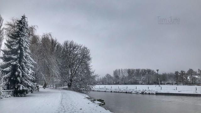 Winter river, Odijk, Netherlands - 0444