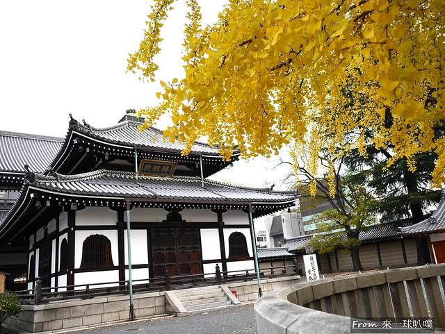 西本願寺31