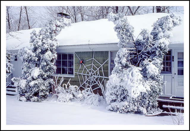 Winter at my Aunt and Uncle's Home - 1983