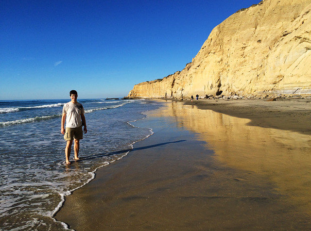 Torrey Pines State Beach, California, USA
