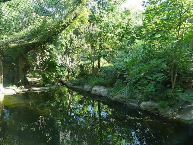 Sumatratiger Gehege, Zoo Brno