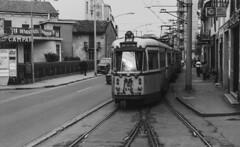 Tram - Metro - Filobus
