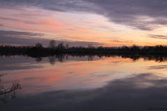 Ciel en rose - Photo of Saint-Lys