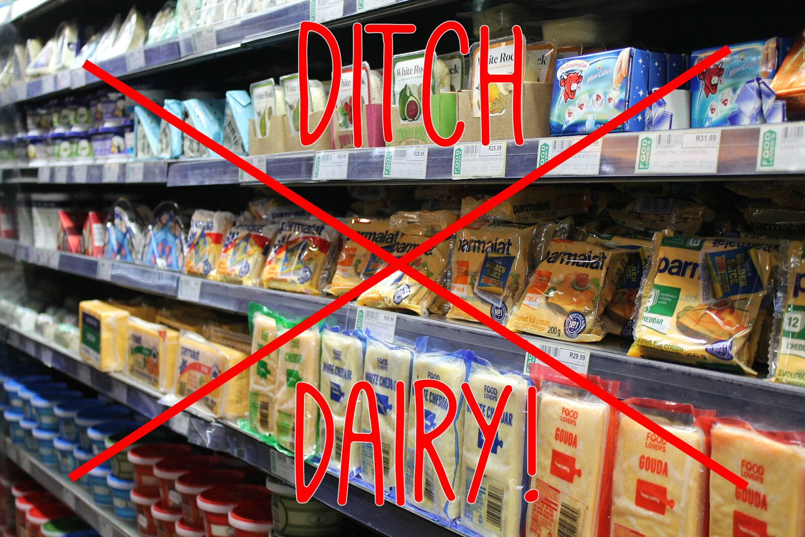 How to Ditch Dairy!