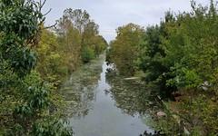 Marans, Canal des Boches, Marais Poitevin