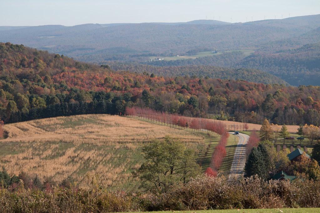 View of Laurel Highlands from Kentuck Knob