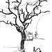 <p><a href=&quot;http://www.flickr.com/people/129697397@N08/&quot;>stevefaradaysketches</a> posted a photo:</p>&#xA;&#xA;<p><a href=&quot;http://www.flickr.com/photos/129697397@N08/38285900354/&quot; title=&quot;Huge metal tree sculpture in bar_Cracow, Poland_October 1999&quot;><img src=&quot;http://farm5.staticflickr.com/4641/38285900354_2da6709a52_m.jpg&quot; width=&quot;155&quot; height=&quot;240&quot; alt=&quot;Huge metal tree sculpture in bar_Cracow, Poland_October 1999&quot; /></a></p>&#xA;&#xA;<p>KANN DAS PAAR AUS WALDSTADT DIE DAS SCHNEEBILD GEKAUFT HABEN BITTE BEI MIR MELDEN?</p>