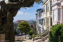 Etats-Unis San Francisco 26 Juillet 2015