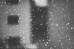 Snowflakes #345/365