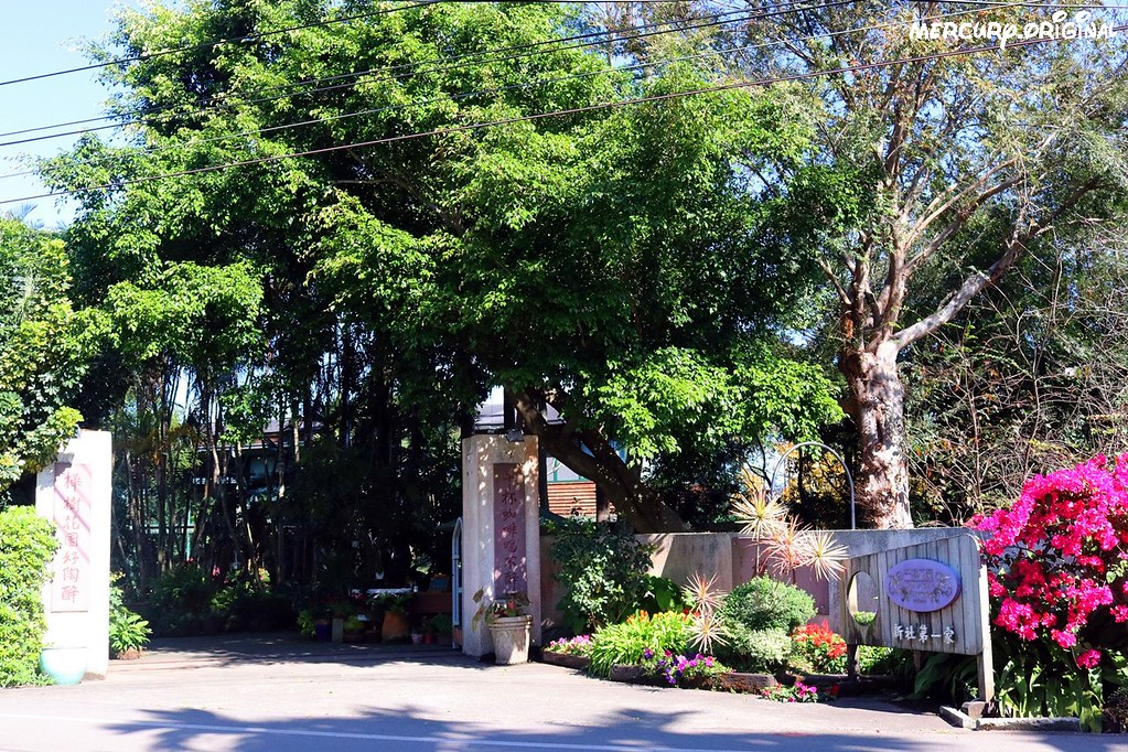 39159877612 095da12e81 b - 熱血採訪|新社千樺花園餐廳,森林裡的玻璃屋咖啡廳,品嚐無菜單法式料理