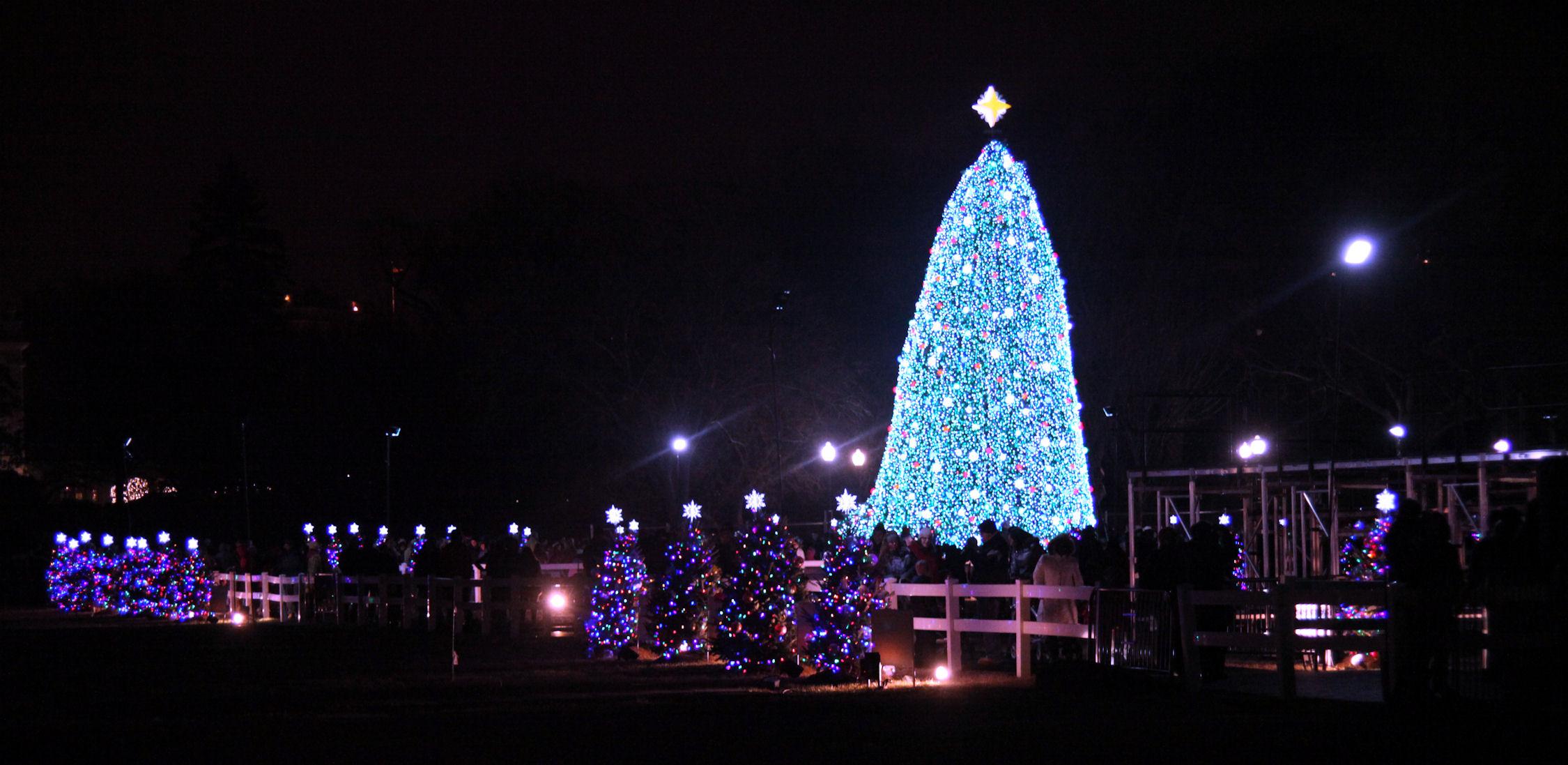 U.S. National Christmas Tree on December 19, 2010