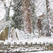 <p><a href=&quot;http://www.flickr.com/people/ketsang/&quot;>KST Photography</a> posted a photo:</p>&#xA;&#xA;<p><a href=&quot;http://www.flickr.com/photos/ketsang/24151414457/&quot; title=&quot;Snow Covered St Peter's Church Cemetery&quot;><img src=&quot;http://farm5.staticflickr.com/4642/24151414457_7e95168461_m.jpg&quot; width=&quot;240&quot; height=&quot;160&quot; alt=&quot;Snow Covered St Peter's Church Cemetery&quot; /></a></p>&#xA;&#xA;<p>Cemetery of St Peter's Church, Harborne is covered by snow</p>