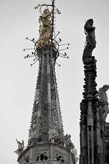 Duomo di Milano. Particolare
