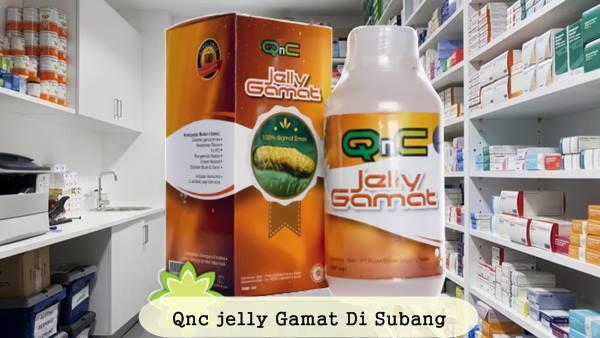 Toko Yang Menjual Qnc Jelly Gamat Di Subang