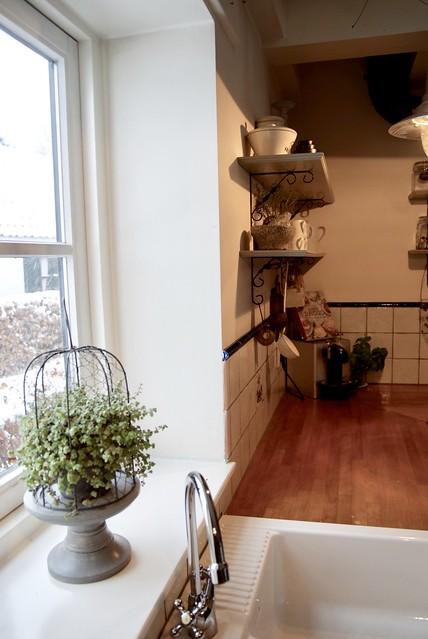 Vensterbank keuken plantje