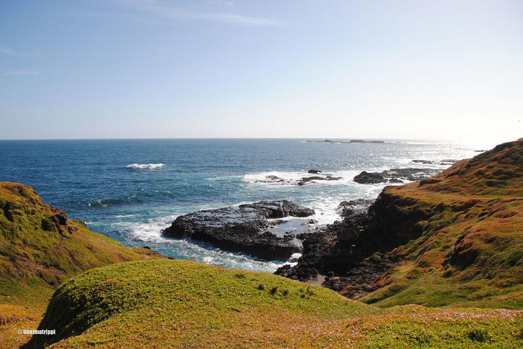 Maisemakuva Phillip Islandin Nobbiesista Australiasta