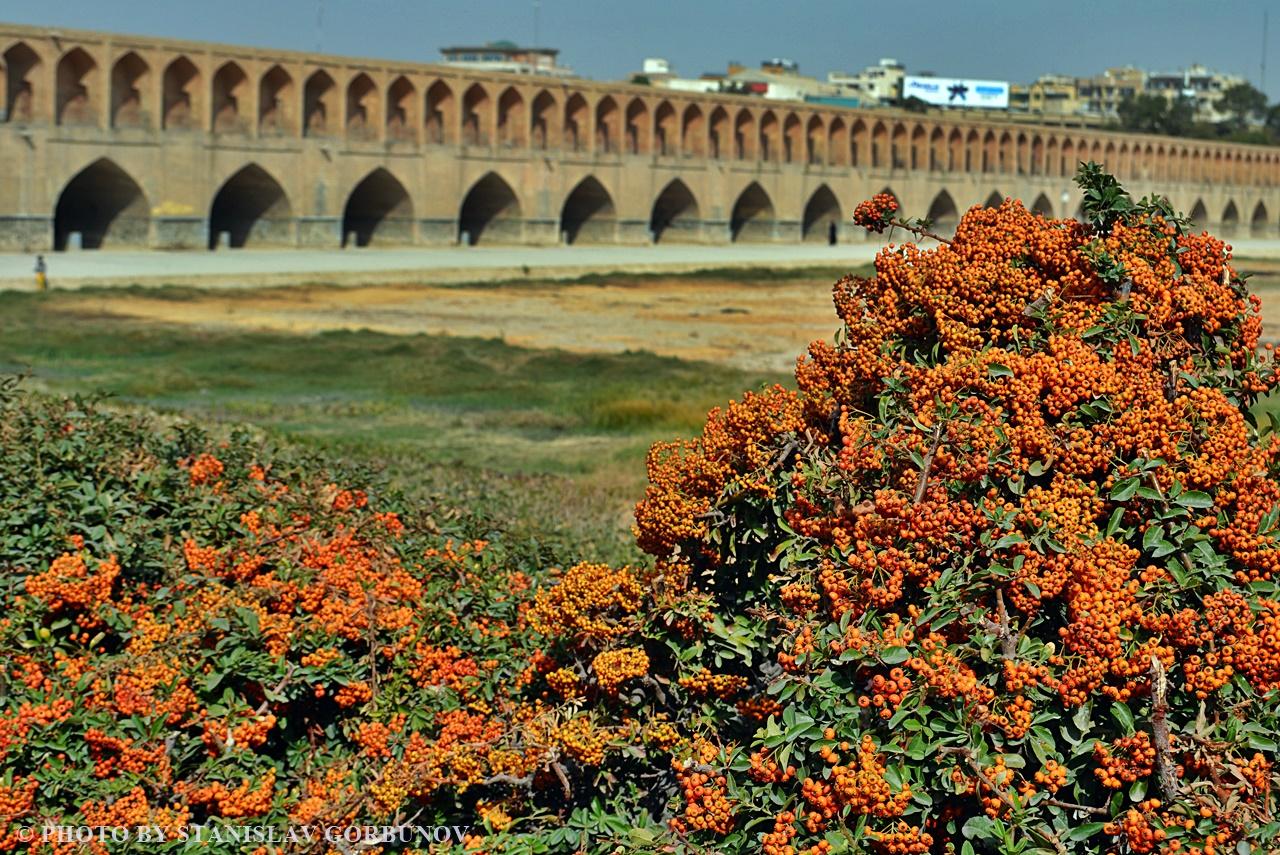 isfahan12