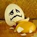 """""""I Was Pushed"""" by Bob Cammarata"""