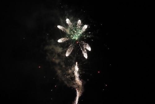 Nyårsfyrverkeri – eldblomma