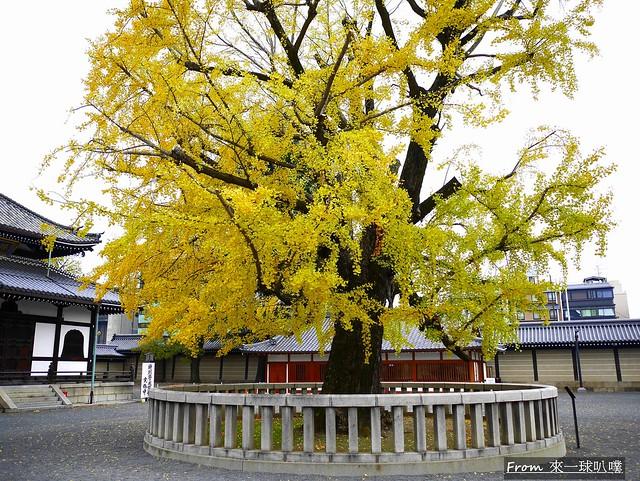 西本願寺29