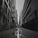 untitled20171214-LA_DEC_2017_ARISTA400_35mm_119.jpg by shawheen // clockcatcher